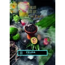 Tobacco Element Water Feijoa (Feijoa) - 100 grams