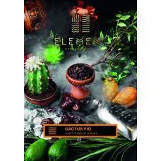 Tobacco Element Earth Cactus Fig (Cactus Finnik) - 100 grams