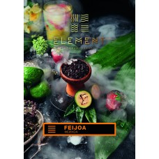 Tobacco Element Earth Feijoa (Feijoa) - 100 grams
