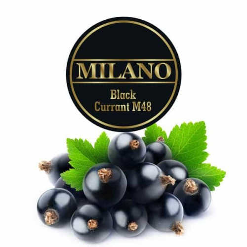 Табак Milano Black Currant M48 (Черная Смородина) - 100 грамм