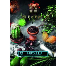 Tobacco Element Water Cactus Fig (Cactus Finnik) - 100 grams